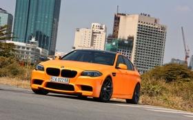Обои BMW, Orange, Matte, Tuning, F10