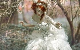 Обои арт, лес, девушка, фантазия, Agnieszka Lorek