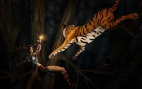 Картинка тигр, Tomb Raider, Райдер, Лара, крофт, Томб