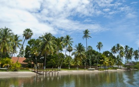 Картинка пляж, небо, вода, пейзаж, пальмы