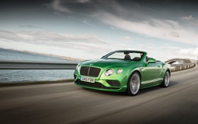 Обои зеленый, Bentley, Continental, кабриолет, Speed, бентли, континенталь