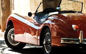 Обои машина, дерево, Jaguar, красная, xk120, боковой вид