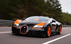 Обои лес, небо, Бугатти, Bugatti, Вейрон, Veyron, суперкар