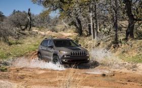 Обои вода, деревья, грязь, внедорожник, бездорожье, американский, Jeep Cherokee Trailhawk