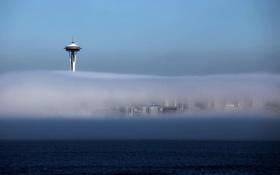 Картинка пейзаж, город, туман