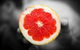 Картинка рука, фрукт, красиво