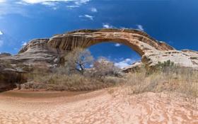 Обои арка, небо, скалы, Arches National Park, кусты, uta, сша