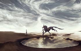 Картинка небо, вода, девушка, фантастика, конь, арт, парень