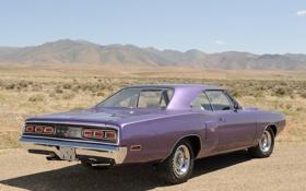 Обои авто, hardtop, обои, dodge, 1970, вид сзади, додж