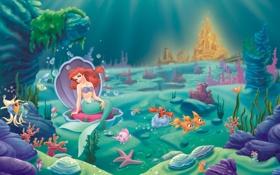 Обои Русалочка, дворец, Сильвестр, Ариэль, The Little Mermaid, водоросли, рыбы