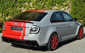 Картинка авто, Concept, спорт, задок, шкода, Škoda, Rapid Sport