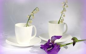 Обои цветы, белое, чашки, колокольчики, ландыши, фарфор, ирис