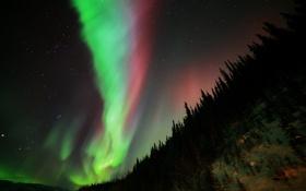 Обои звезды, ночь, природа, северное сияние, Aurora Borealis