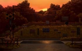 Картинка солнце, деревья, закат, япония, рельсы, вечер, знаки