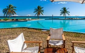 Обои пляж, бассейн, зонтики, природа, тропики, пальмы, море