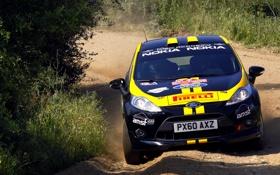 Обои Ford, Спорт, Rally, WRC, Ралли, Капот, Черный
