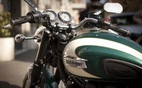 Картинка мотоцикл, Triumph, Triumph Motor Company