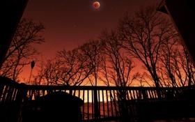 Обои небо, ночь, луна, вечер
