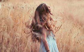 Картинка поле, девушка, настроение