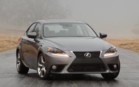 Картинка машина, туман, фары, Lexus, лексус, передок, IS 350