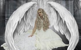 Обои девушка, лучи, свет, деревья, лицо, фантастика, крылья