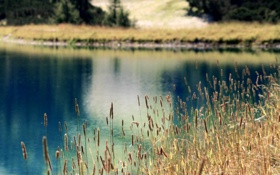 Обои природа, озеро, река, фото, холмы, обои, поляна