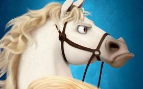 Обои конь, грива, Рапунцель, Максимус, ноздри