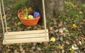 Картинка осень, макро, парк, качели