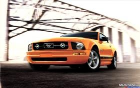 Обои mustang, ford, orange