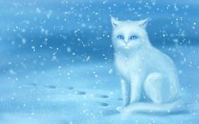 Обои зима, кошка, снег, следы, арт, белая