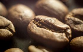 Обои макро, утро, Кофе