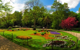 Картинка трава, деревья, цветы, парк, отдых, Германия, разноцветные