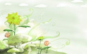 Обои облака, цветы, грибы