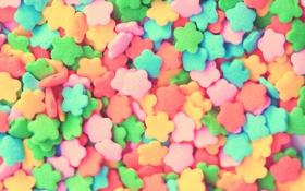 Обои краски, еда, colors, сладости, десерт, food, 2560x1600