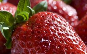Картинка еда, клубника, ягода, красная