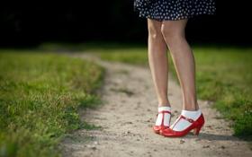 Картинка трава, ноги, туфли