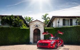 Обои небо, солнце, Mercedes-Benz, особняк, мерседес, кусты, AMG