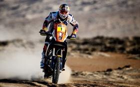 Обои Скорость, Мотоцикл, Гонщик, Мото, Red Bull, Дакар