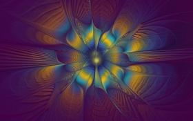 Картинка цветок, линии, полосы, узоры