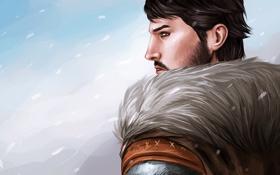 Обои зима, снег, арт, мех, мужчина, метель, Dragon Age 2