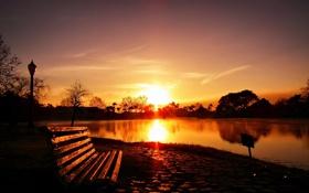 Картинка свет, пейзаж, закат, город, парк, скамья