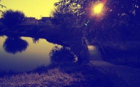 Обои листья, закат, деревья, природа, мост, вода, озеро