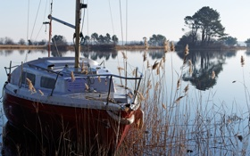 Картинка деревья, река, лодка