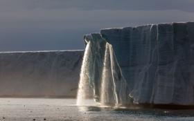 Обои ледник, айсберги, вода, океан