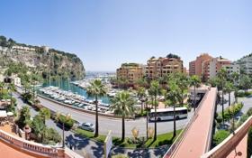 Обои дорога, пальмы, улица, пристань, яхты, автобус, Монако