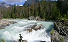 Картинка камни, река, скалы, деревья, поток, горы, небо