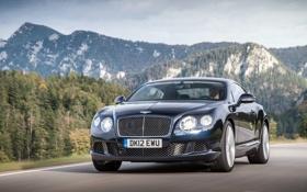 Картинка Continental, Люкс, передок, Speed, Капот, День, Bentley