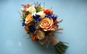 Обои цветы, букет, композиция