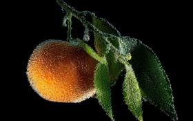 Картинка макро, пузыри, фрукт
