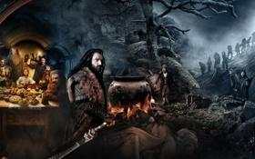 Картинка фэнтези, гномы, приключения, Хоббит, The Hobbit, Нежданное путешествие, An Unexpected Journey